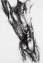 drawing of a trembling torso